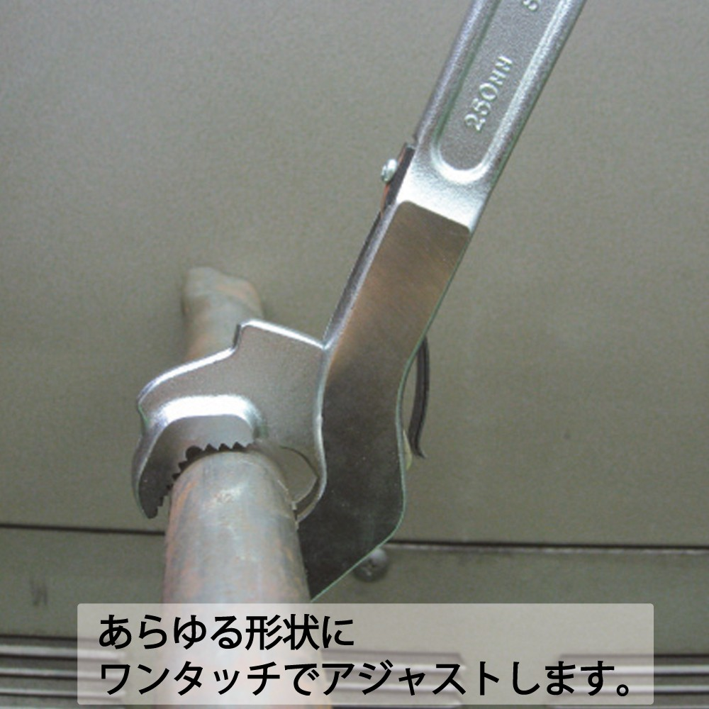 SW_使用例